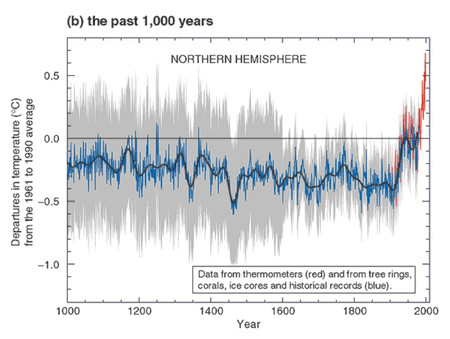 Climate_change_2001_past_1000_years